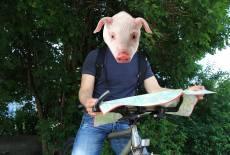 Schweinchen such !