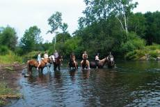 Reiterferien auf dem Südhof Döbbrick