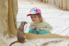 Super Ferienzeit im Zoo & Schloss Hoyerswerda