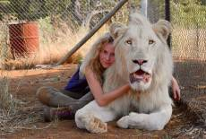 Löwenspielfilm mit ernstem Hintergrund