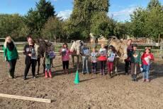 Ein knallbuntes Pferdeabenteuer – auf der El Bobo Ranch